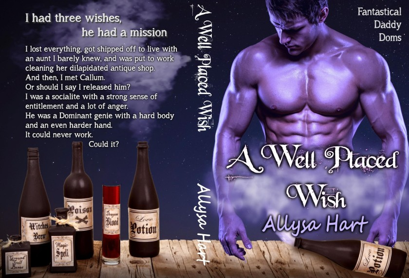 Allysa Hart Well Placed Wish promo