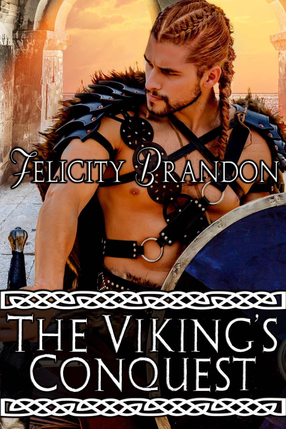 Don't miss out, The Viking's Conquest is only 99 cents!