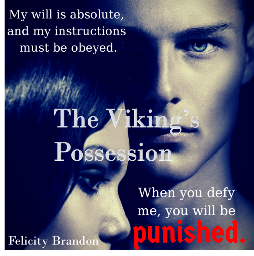 The Viking's Possession teaser 3.jpg