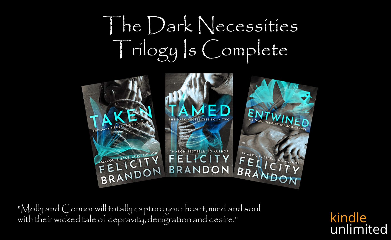 Dark Necessities Trilogy Graphic